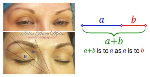 Advanced Microblading-Microshading Manual