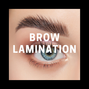Brow Lamination Kit + Course